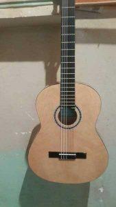 فروش گیتار حرفه ای و آموزشی