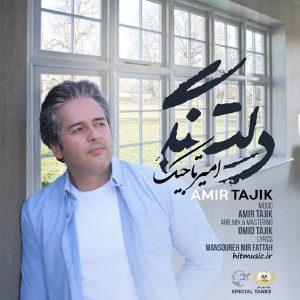 اهنگ امیر تاجیک دلتنگی